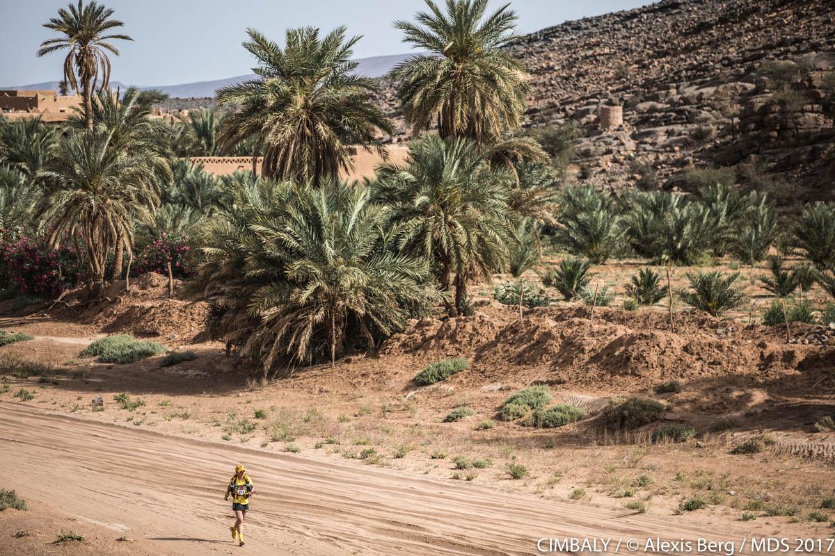 Marathon des sables : de magnifiques palmiers