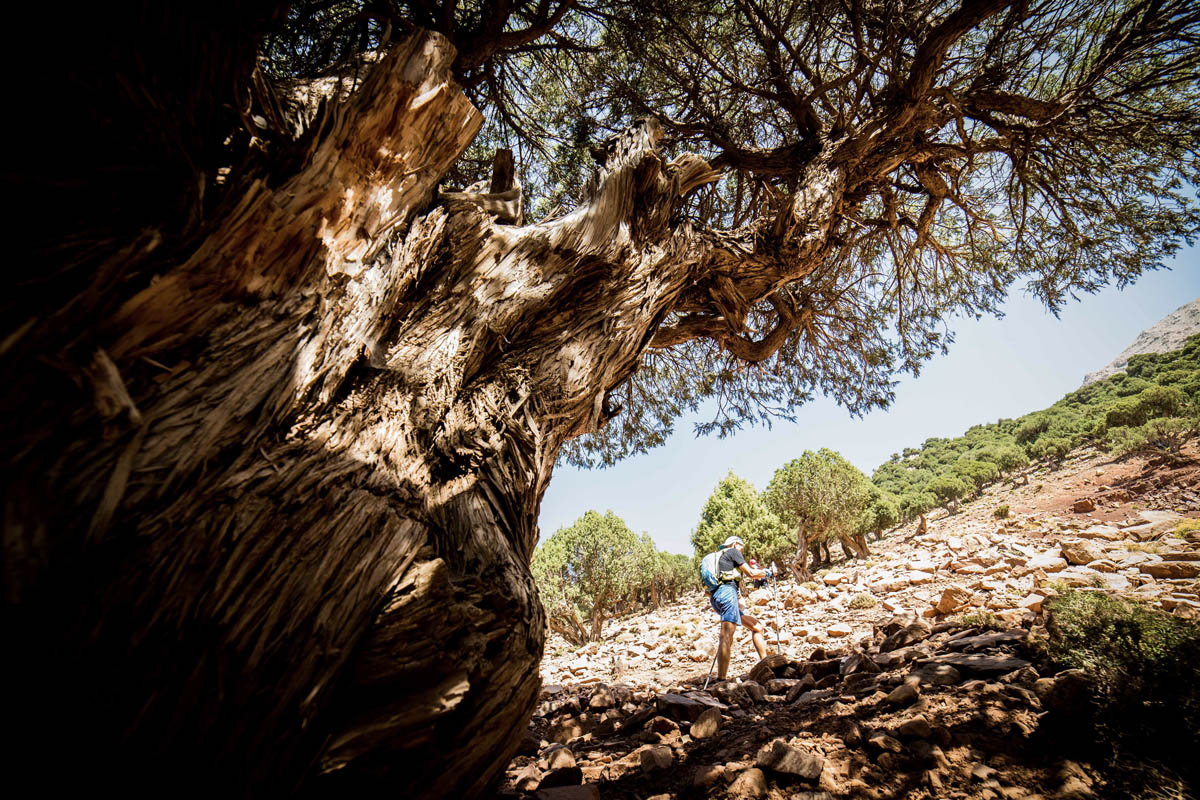 12ème Ultra Trail Atlas Toubkal
