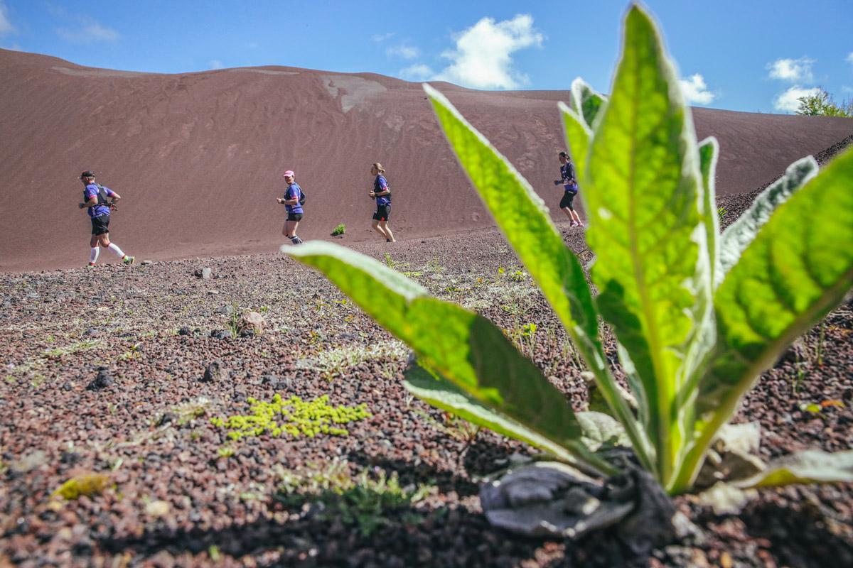 Annulation de la Volvic Volcanic Experience 2021
