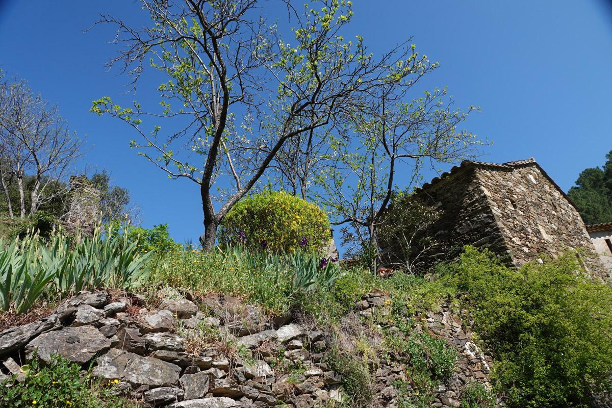 Tarn Valley Trail
