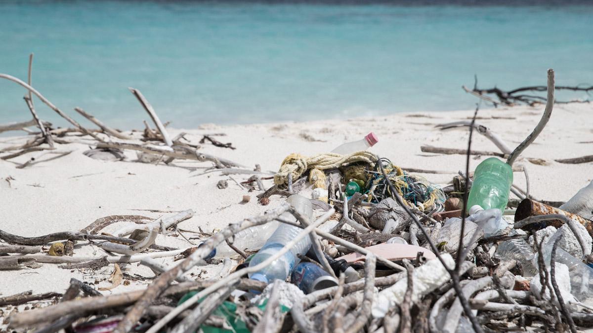 Adidas et Parley for the Oceans célèbrent le 5e anniversaire de leur partenariat