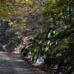 Tarn Valley Trail. Un 100 miles à l'Américaine enfin en France !